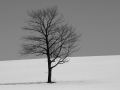 standing_alone_in_black_and_white1